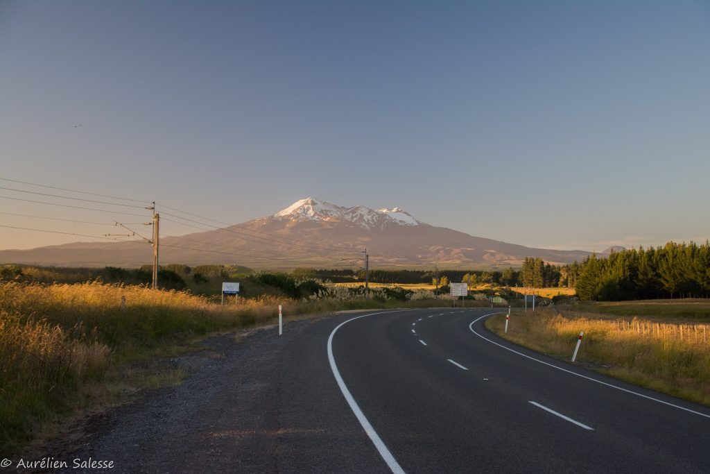 Road Trip-20
